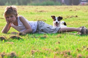 traumhund-challenge-zufrieden