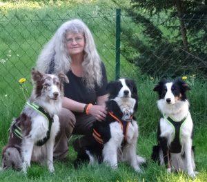 Bewertung Traumhund-Challenge