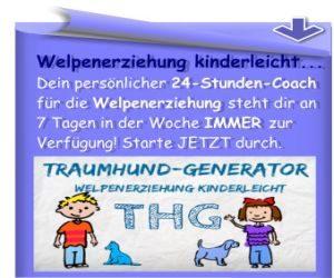 thg-banner3-300x250