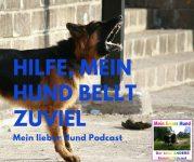 Hund bellen Hundegebell