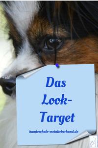 Pin Looktarget