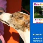 Bowen-Therapie