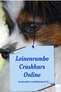 Leinenrambo Crashkurs