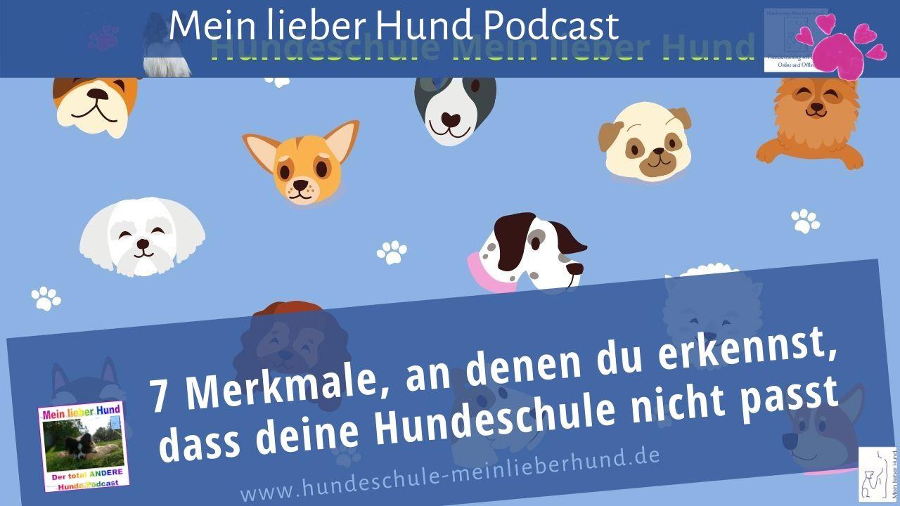 7 Merkmale, dass deine Hundeschule nicht zu dir passt