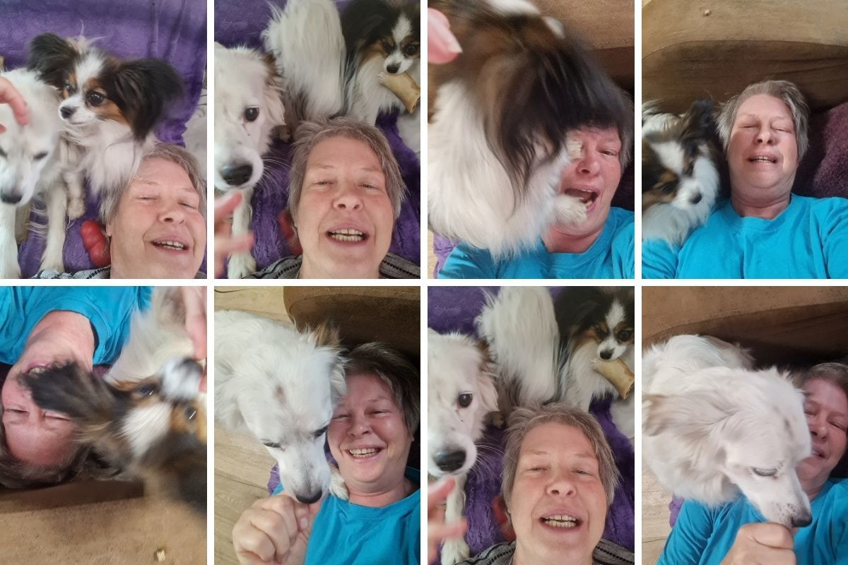 Selfi mit Hunden