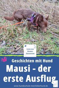 Mausi - Erster großer Ausflug